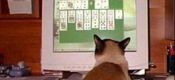 Il gioco per tutti
